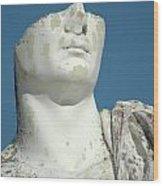 Emperor's Bust Wood Print