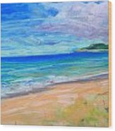 Empire Beach Wood Print by Lisa Dionne