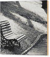 Empty Park Bench On Edge Wood Print by (c) Conrado Tramontini