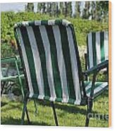 Empty Seats On Garden Lawn Wood Print