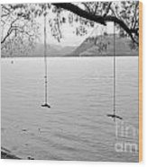 Empty Swings In The Rain Wood Print