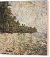 Empty Tropical Beach 2 Wood Print