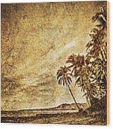 Empty Tropical Beach 3 Wood Print