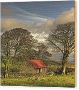 Emsworthy Barn Wood Print