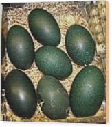 Emu Eggs Wood Print