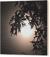 Enchanted By Moonlight Wood Print