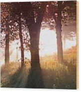Enchanted Meadow Wood Print