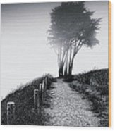 End Of A Road Wood Print