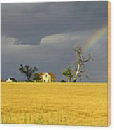 End Of The Rainbow Wood Print by James Steele