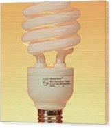 Energy Saving Light Bulb Wood Print