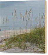 Englewood Beach Wood Print