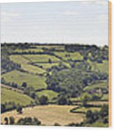 English Countryside Panorama Wood Print by Jane Rix