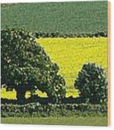 English Field Of Yellow 2 Wood Print