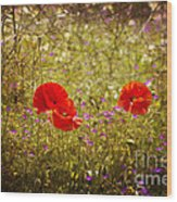 English Summer Meadow. Wood Print