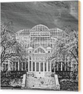 Enid A Haupt Conservatory  Wood Print
