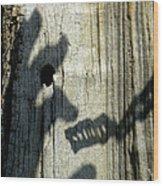 Enmity Between Us Wood Print