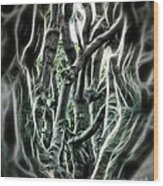 Entangled Worlds Wood Print by Danuta Bennett