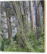 Entering Sleepy Hollow Wood Print