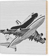 Enterprise Shuttle Ny Flyover Wood Print by Regina Geoghan