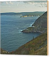 Entrance To St. John's Harbour Wood Print