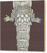 Ephesian Statue Of Artemis Wood Print