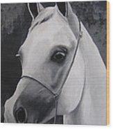 Equestrian Silver Wood Print