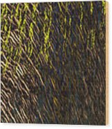 Eris - Macro1 Wood Print