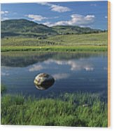 Erratic Boulder And Small Pond In Lamar Valley Wood Print by Altrendo Nature