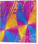 Erythromycin Crystal Wood Print