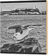 Escape From Alcatraz Wood Print