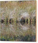 Escape Hatches Wood Print