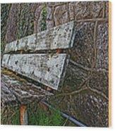 Esp Bench  Wood Print