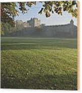 Estate Of Cahir Castle Cahir, County Wood Print