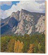 Estes Lake Autumn View  Wood Print