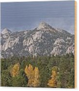 Estes Park Autumn Lake View Vertical Wood Print