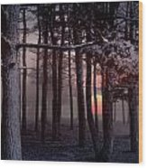 Ethereal Forest Wood Print