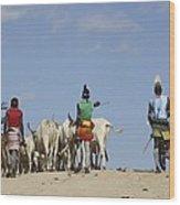 Ethiopia, Hamer Tribe Herding Cattl Wood Print by Photostock-israel