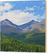 Euphoric Valleys Wood Print