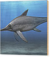 Eurhinosaurus Longirostris Swimming Wood Print