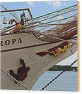 Europa Wood Print