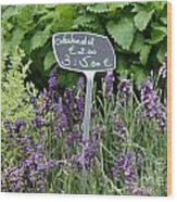 European Markets - Lavender Wood Print