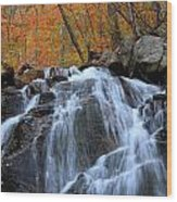 Evans Notch Waterfall Wood Print