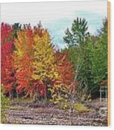 Even Cloudy Days Sing In The Adirondacks 1 Wood Print