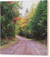 Even Cloudy Days Sing In The Adirondacks 10 Wood Print