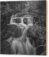 Even Flow 4.1 Bw Wood Print