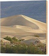 Evening Dune Wood Print