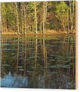 Evening Light On A Missouri Pond I Wood Print