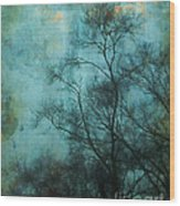 Evening Sky Wood Print by Judi Bagwell