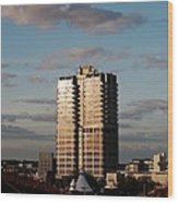 Evening View Of Murray John Tower In Swindon Wood Print by Nick Temple-Fry
