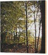 Evenings Warmth Wood Print